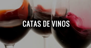 Catas de vinos